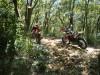 Hiking 2012 June 16 - 頁 2 735277433927395