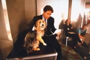 Cекретные материалы / The X-Files (сериал 1993-2016) 58299f436850451