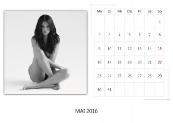 "Selena Gomez ""Selfmade Calendar 2016"" ( 12x ) B74901455014924"