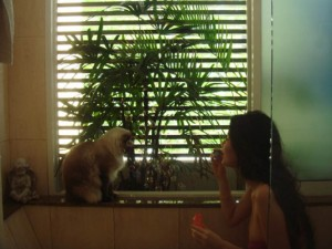 gwendolyn wan love cats and dogs 01