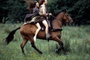Храброе сердце / Braveheart (Мэл Гибсон, 1995)  Dd7904471247203