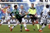 фотогалерея Udinese Calcio - Страница 2 F2e0ef472936984