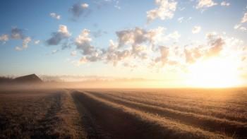 Туманные пейзажи завораживающей красоты (100 шт)