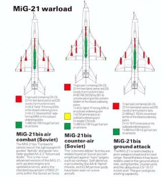 MIG-21, MIG-25, MIG-29SMT. Your views E8d8f2477053489
